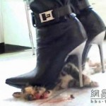 new-high-heel-kitten-killer-10