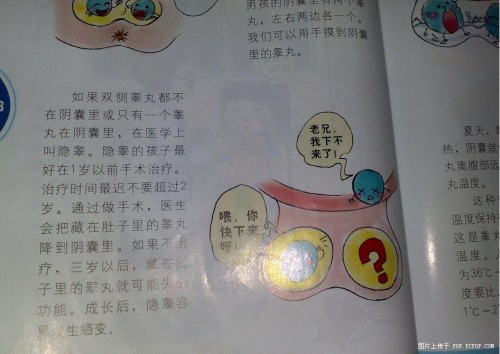 Young Chinese kids are taught about sex in first grade.