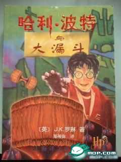 Fake Harry Potter.