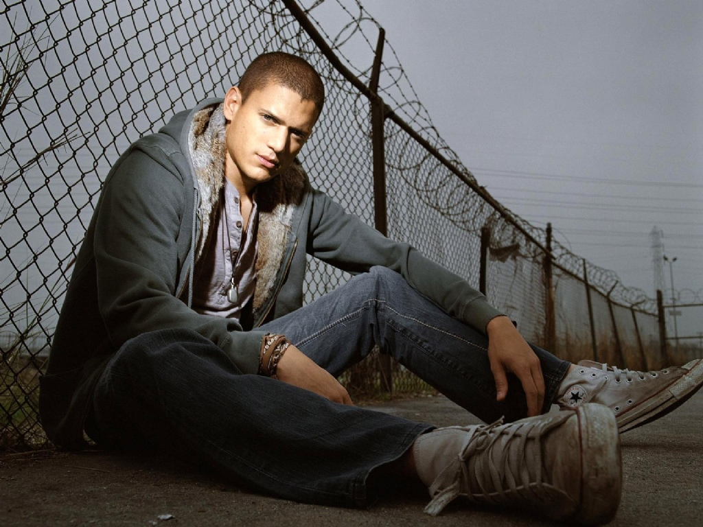 Did you watch Prison Break? What did you think about the ending finale?