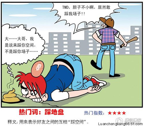 2009-chinese-memes-07-cai-di-pan
