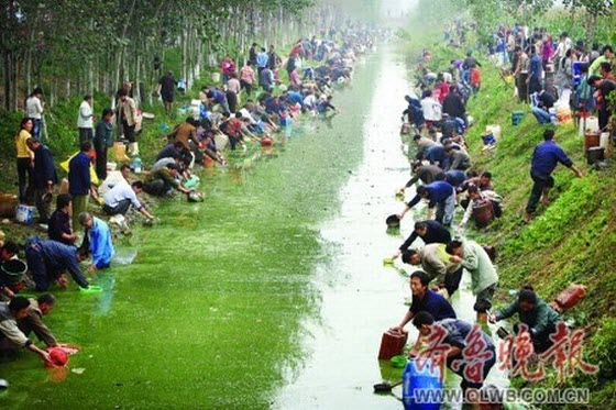 Hundreds of Chinese villagers in Shandong are photographed wading in a small river collecting valuable diesel oil that had leaked out from a nearby pipeline.