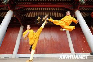 shaolin-kung-fu-kicks