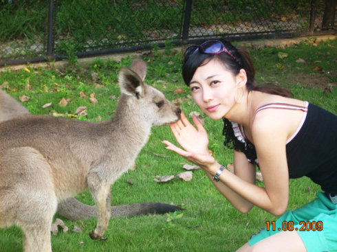 wang-zifei-small-kangaroo