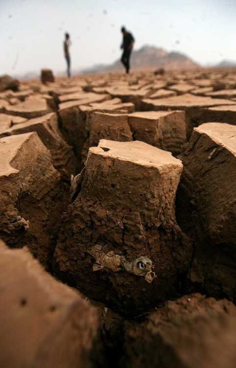 Chunks of dried lake bed in China.