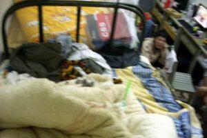 China boys dorm has mice on the bed!