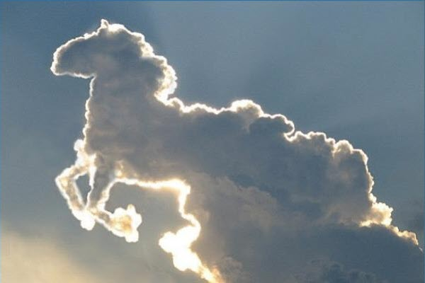 Horse in the clouds.