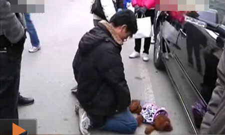 Young man in Suzhou kneels on the cold ground before a dead dog he had accidentally hit and killed.