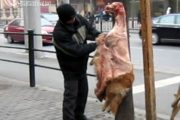 Golden Retriever dog skinned publicly on a street in Shanghai.