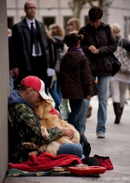 A photograph of a homeless man and his faithful golden retriever.