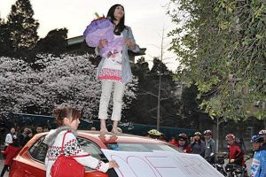 A Chinese girl stands on top of her car, a Volkswagen Polo, with a bouquet of roses in her arms, preparing to propose to her boyfriend, during the Wuhan University Cherry Blossom Festival in China.