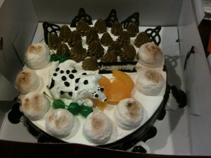 Shanghai Birthday Cakes