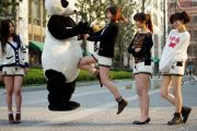 A Chinese girl in panda shorts knees a jumping panda.