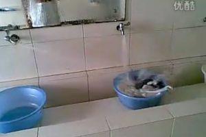 "Chinese univeristy student's ""washing machine""."