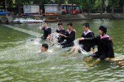 Wuhan university graduates in graduation gowns frolicking in flood waters.