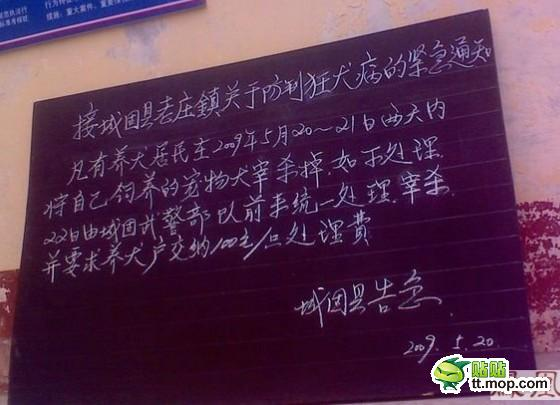 A dog culling notice in China.