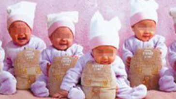 Guangzhou wealthy couple uses in vitro fertilization and surrogate mothers to have 8 babies..