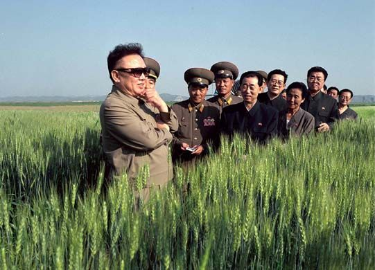 Kim Jong-il stands in a wheat field in a propaganda photo.