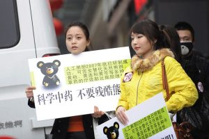 Two Chinese girls holding up posters protesting the extraction of bear bile from live caged Asiatic black bears by the Guizhentang company.