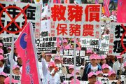 Taiwanese protesters protesting against the import of American beef containing ractopamine additive.