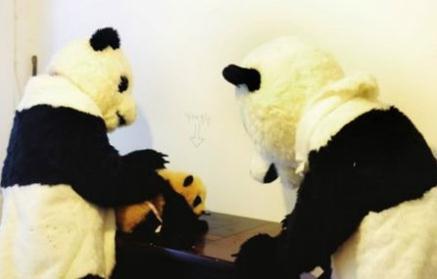 giving the panda a shot
