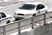Miami police shoot dead a naked man who was eating another man's face in public on the MacArthur Causeway during Memorial Day weekend.
