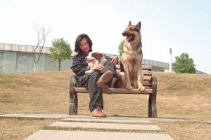 Deng Jinjie and his dogs.