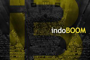 Introducing indoBOOM
