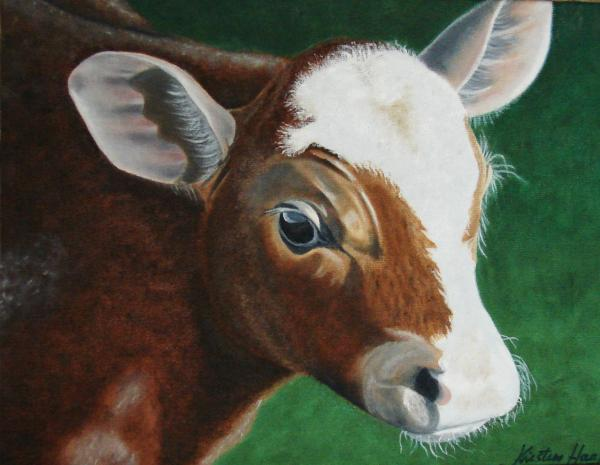 Baby Calf Kristina Hauk