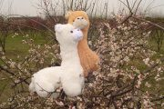 "Stuffed alpaca ""grass mud horse"" toys."