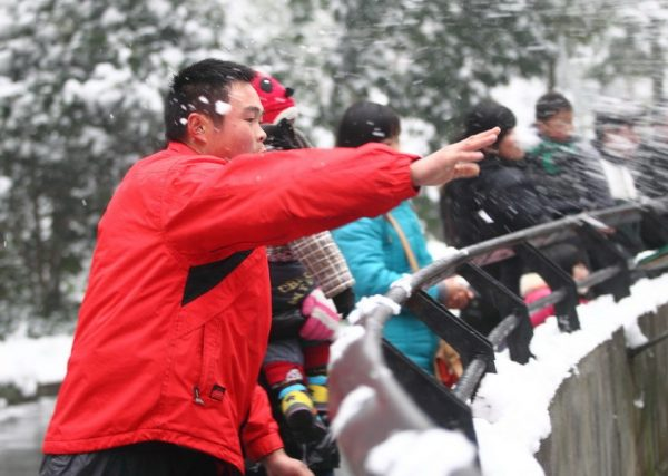 A man is tossing snowballs at the lions.