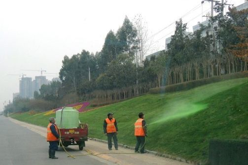 Workers Spraying Green Paint Onto Roadside Grass