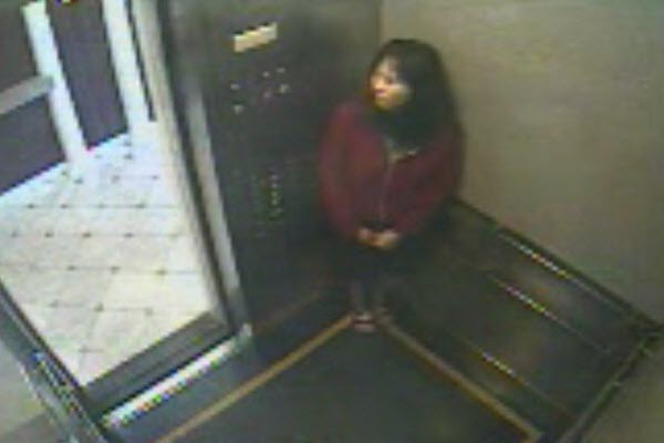 Missing Canadian-Chinese Elisa Lam behaving strangely in a Los Angeles hotel elevator, in surveillance video released by the LAPD.