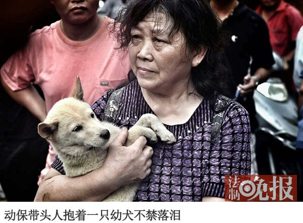 A dog lover is holding a dog in her arms.