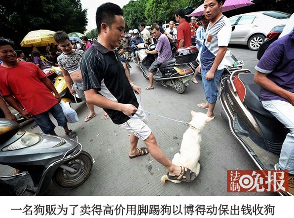In order to get a higher price, a dog peddler kicks a dog with his foot to get animal protection group members to pay money to buy it.