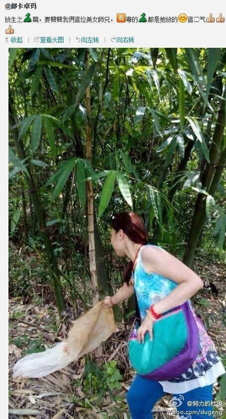 guangdong-chinese-woman-releases-poisonous-snakes-says-doing-good-05