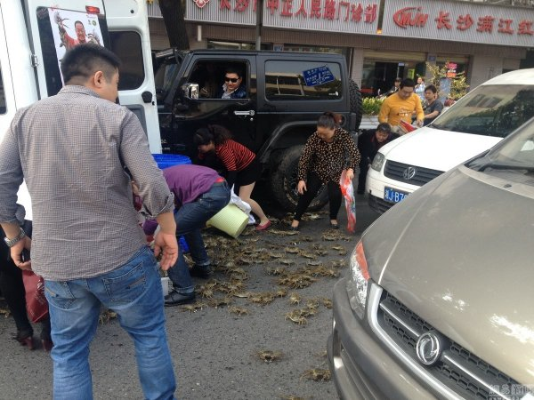 Chinese residents of Changsha looting the crabs that spilled out of a van in a traffic accident.