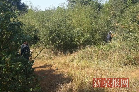 Civil-Servant-Shoots-and-Kills-Tea-picking-Woman-While-Hunting-05
