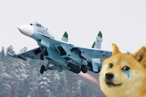 su-27-doge-pelts