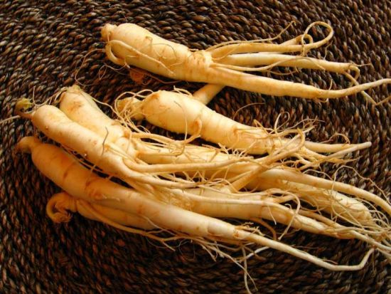 Ginseng Wholesalers Modify Plants to Deceive Ignorant Buyers