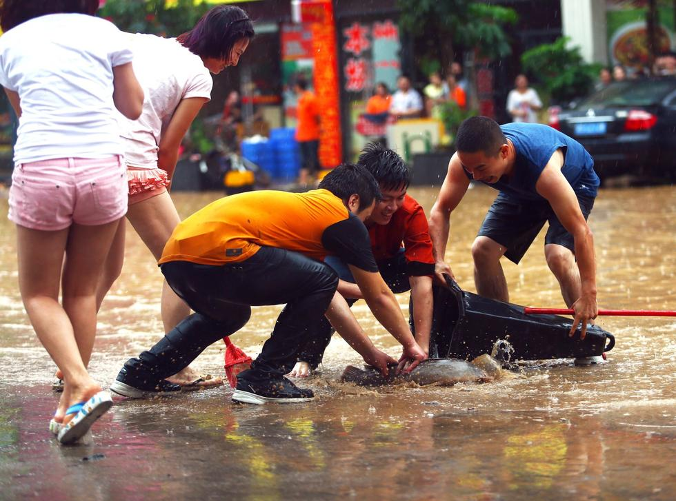 Heavy Rain Floods Entire City, Residents Go Fishing
