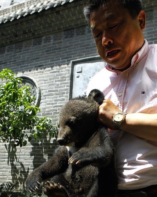Xi'an Man Finds Baby Bear, Takes it Home, Feeds it