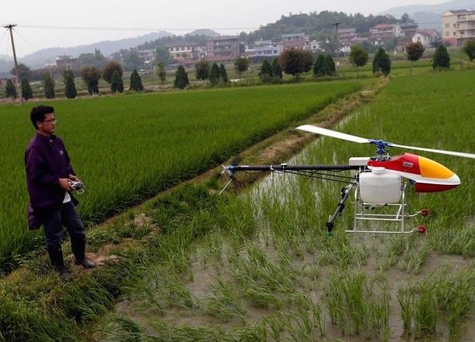 Man Makes 2.8 Million RMB on Family Farm