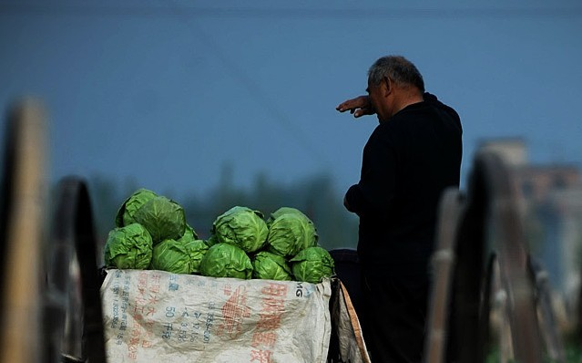 Poor_Hardworking_Farmer_Has_2400_RMB_And_Cellphone_Stolen