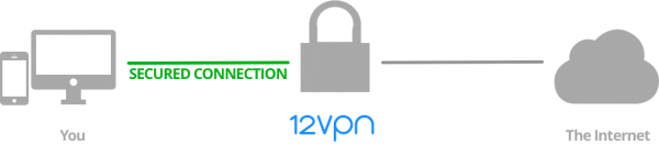 12vpn-vpn-diagram